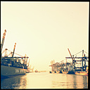 Evening light in the Walter Hofer harbor, container ships, Hamburg, Germany - MS003757
