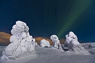 Scandinavia, Finland, Kittilae, Polar lights, Aurora borealis - SR000530