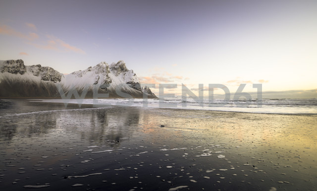Iceland, Black sandy beach of Stokksnes - STCF000028