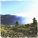 Clouds drift across the mountain, National Park, La Palma, Canary Islands, La Palma, Spain - SEF000678