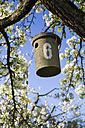 Germany, Baden-Wuerttemberg, Tuebingen, Apple tree, Nest box - LVF001079