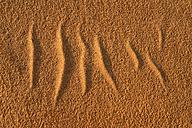 Algeria, Tassili n Ajjer, Sahara, sand ripples on a desert dune - ESF000996