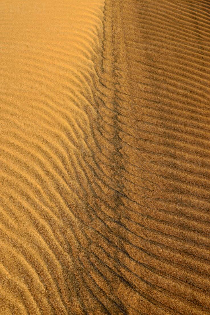 Algeria, Tassili n Ajjer, Sahara, sand ripples on a desert dune - ESF001010 - Egmont Strigl/Westend61