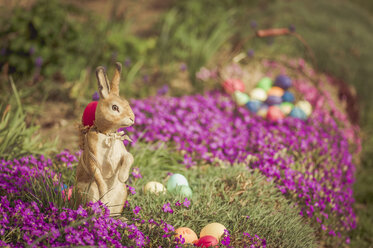 Easter bunny in garden with flowers - MJF000968