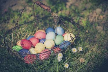 Easter basket in garden - MJF000976