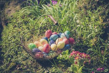 Germany, Easter eggs in wire basket in garden - MJF000983