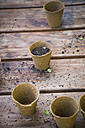 wooden table with nursery pots and soil - LVF001139