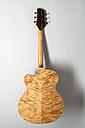 Guitar by Joe Striebel, rear side - TCF004000
