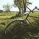 Germany, North Rhine-Westphalia, Petershagen, Old bicycle on a farm with grasses. - HAWF000144