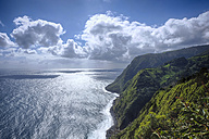 Portugal, Azores, Sao Miguel, Cliff line at Nordeste - ONF000502