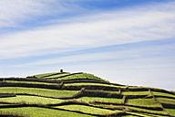 Portugal, Azores,Sao Miguel, Rural landscape at Atlantic coast - ONF000464