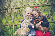Portrait of two little girls with cat and chicken - MJF001163