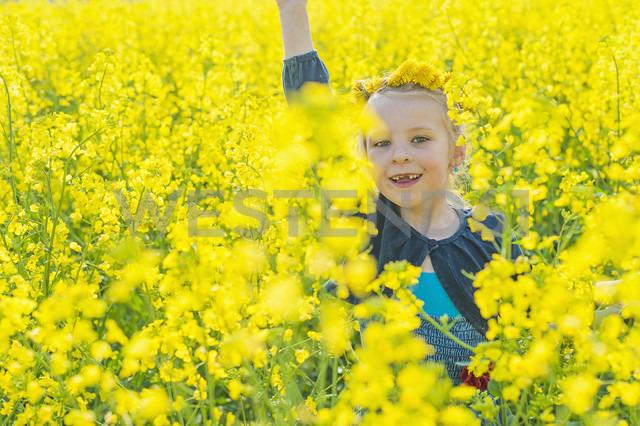 Little girl sitting in rape field - MJF001157