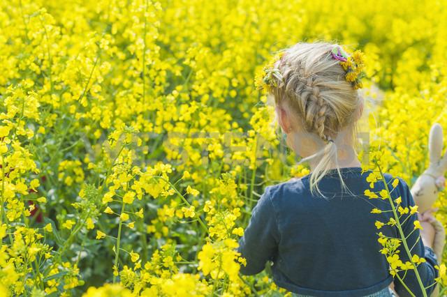 Little girl looking at rape field - MJF001112