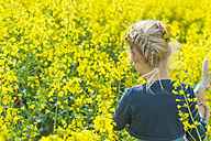 Little girl looking at rape field - MJF001112