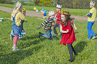 Group of children playing on a meadow - MJF001159
