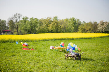 Wooden trolley with balloons and table of children's birthday party on a meadow - MJF001153