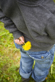 Little girl hiding dandelions behind back, partial view - LVF001152