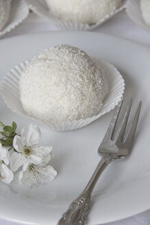 Snowball pastry on white plate - YFF000123