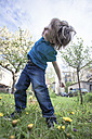 Happy little boy dancing in the garden - ZMF000272