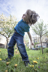 Happy little boy dancing in the garden - ZMF000272