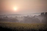 Germany, North Rhine-Westphalia, Detmold, Teutoburg Forest, Sunrise - SBDF000807