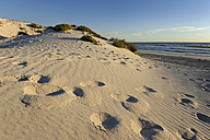 Australia, Western Australia, Lancelin, beach and dunes with footprints - MIZ000490