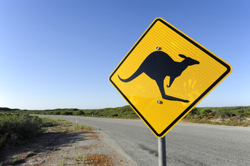 Australia, Western Australia, Cervantes, road with kangaroo warning sign - MIZ000485