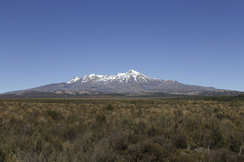 New Zealand, view to Mount Ruapehu - STDF000055