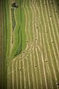 Germany, Rhineland-Palatinate, Eifel, aerial view of fields landscape - PAF000627