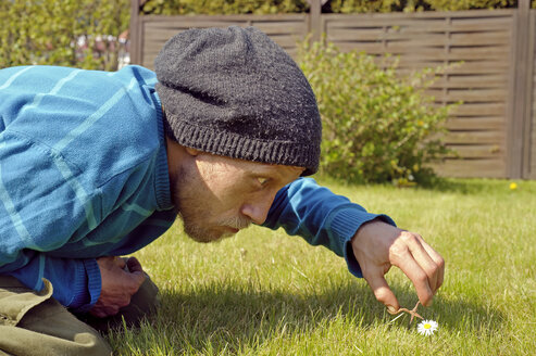 Man cutting daisy with miniatur scissors - HACF000110