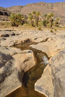 Algeria, Tassili N'Ajjer National Park, Iherir, Water in a guelta at Idaran Canyon - ES001077