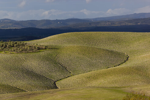 Italy, Tuscany, Province of Siena, Crete Senesi, Landscape of hills with furrows - KLRF000052