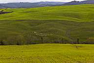 Italy, Tuscany, Province of Siena, Crete Senesi, Landscape - KLRF000055