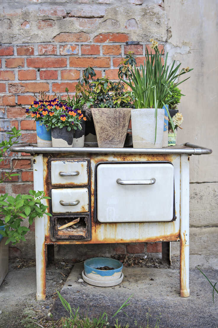 Germany, Bavaria, Old oven with flower pots - VTF000224 - Val Thoermer/Westend61