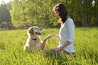 Golden Retriever giving young woman a paw - BFRF000429