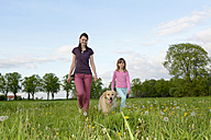 Young woman and little girl walking with Golden Retriever on meadow - BFRF000437