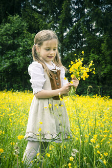 Little girl wearing country style dress collecting buttercups, Ranunculus, on meadow - SARF000594