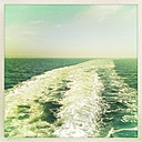 Germany, North Frisia, Foehr, ferry - MMO000221