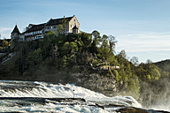 Switzerland, Schaffhausen, Rhine falls with Laufen Castle - ELF000977