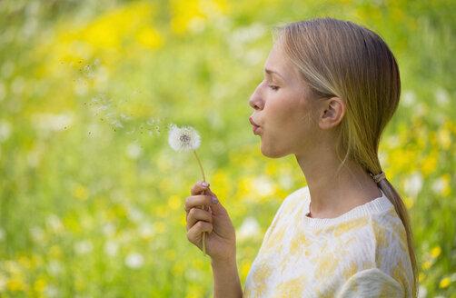 Portrait of teenage girl blowing blowball on a flower meadow - WWF003311