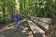 Australia, New South Wales, Dorrigo, bench and kids hiking in the rainforest of the Dorrigo National Park - SHF001333