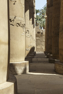 Egypt, Luxor, columns with hieroglyphs of Karnak temple - STD000101