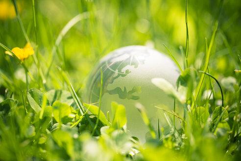 Globe glass ball - SARF000602