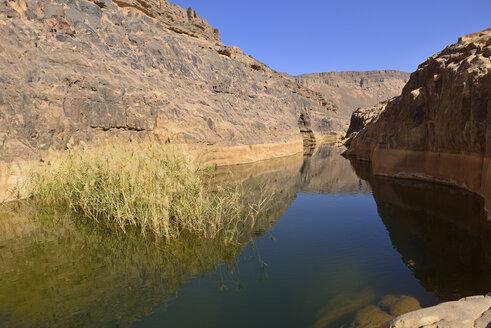 Africa, Algeria, Tassili N'Ajjer National Park, Iherir, Water in a guelta at Idaran Canyon - ES001107
