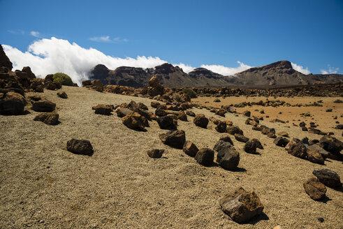 Spain, Canary Islands, Tenerife, Teide National Park, Volcanic landscape, Plateau - WGF000290