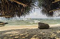 Indonesia, Riau Islands, Bintan, Nikoi Island, Dead tree trunk on beach - THAF000355