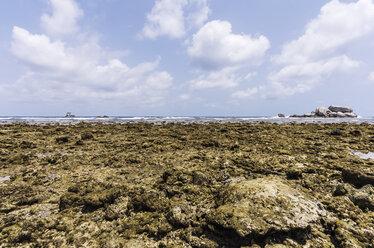 Indonesia, Riau Islands, Bintan, Nikoi Island, Beach with granite rocks an coral reef - THAF000360