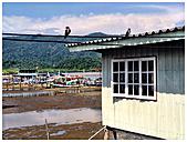 Thailand, Koh Chang, Bang Bao fishing village - AVSF000200