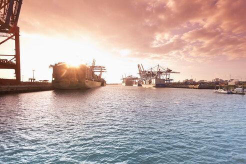 Germany, Hamburg, Container ships at the Waltershofer harbor - MS003956